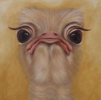Struisvogel Olieverf op paneel, 40 x 50 cm