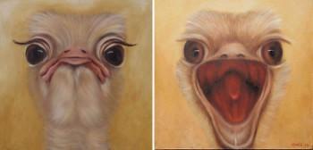Struisvogels Olieverf op paneel, 35 x 35 x 4 cm Beide kanten beschilderd!
