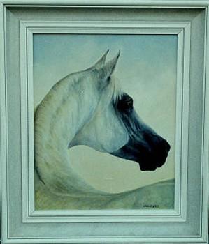 Arabier Olieverf op paneel, 40 x 50 cm